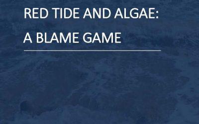 Red Tide & Algae: A Blame Game