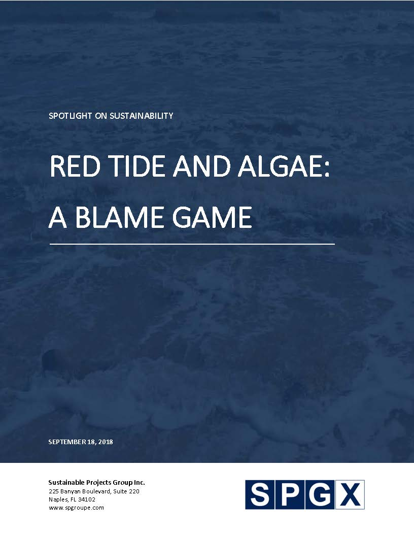 Red Tide & Algae: A Blame Game
